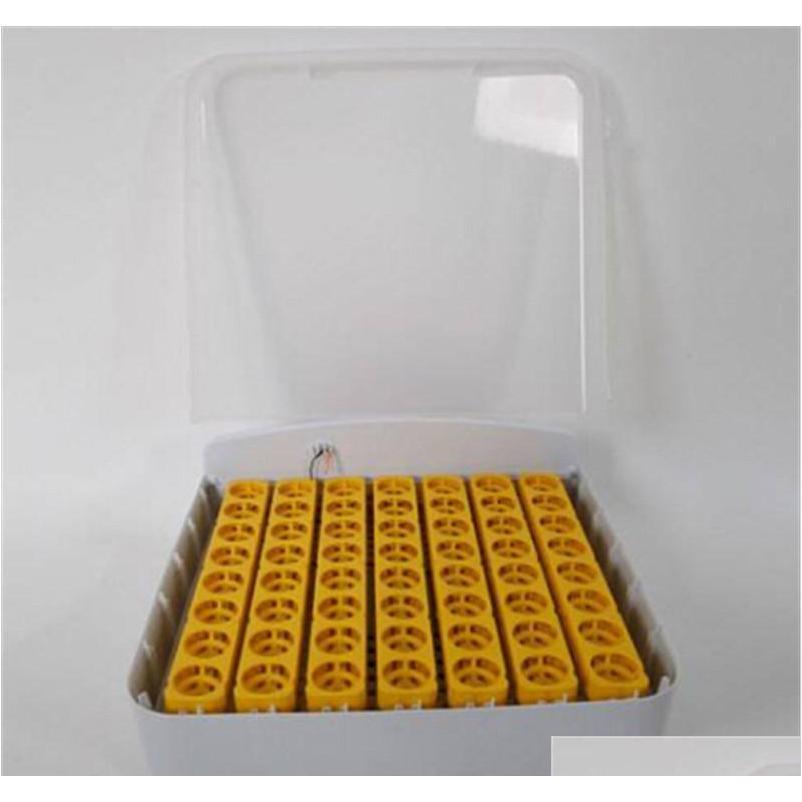 Großhandel Inkubatoren 56-Ei Praktisch Vollmatic Geflügel Inkubator mit Egg Candler Qylbwl Sports2010