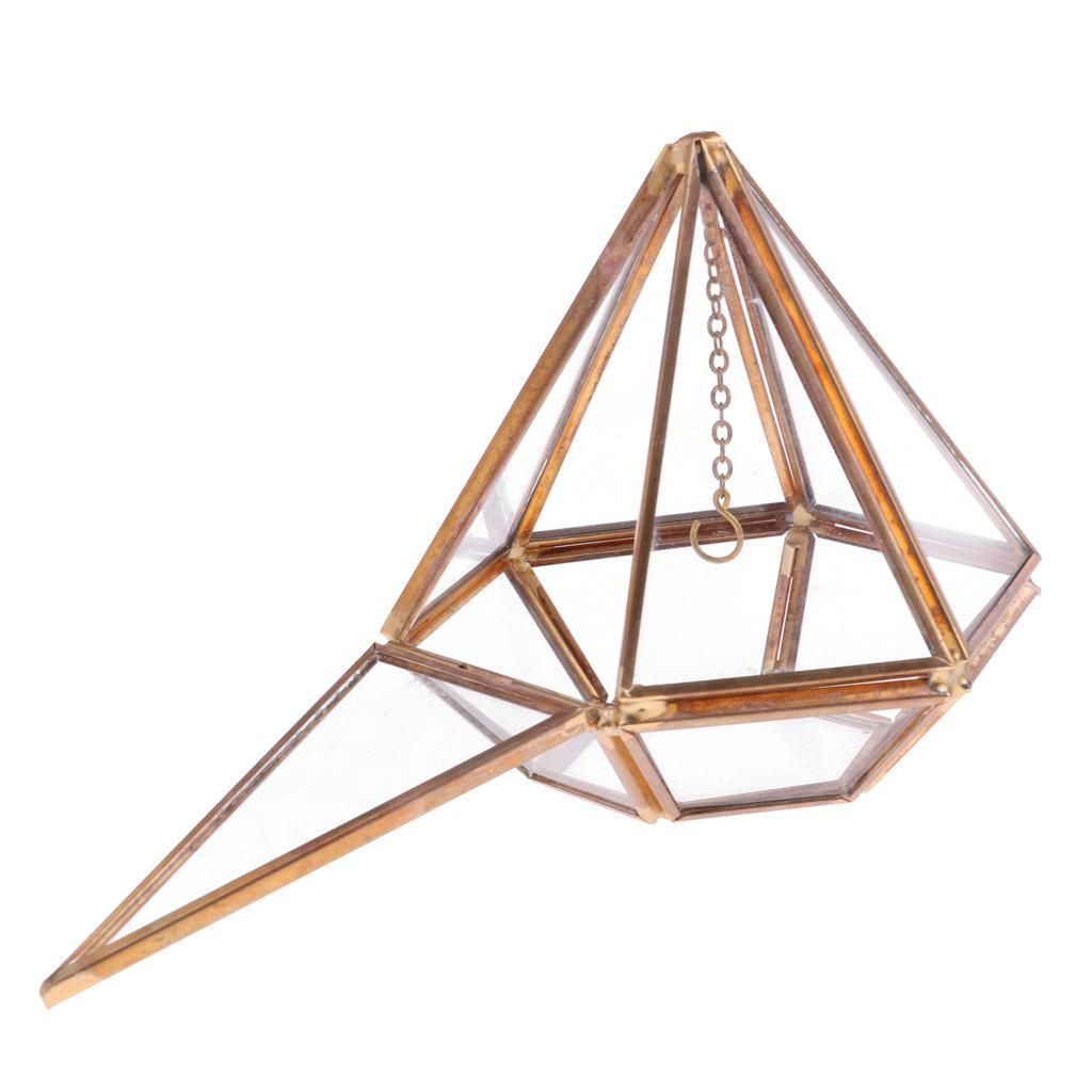 Verre suspendu vertébraux géométrique Terrarium Succulent Air Planteur Tabletop
