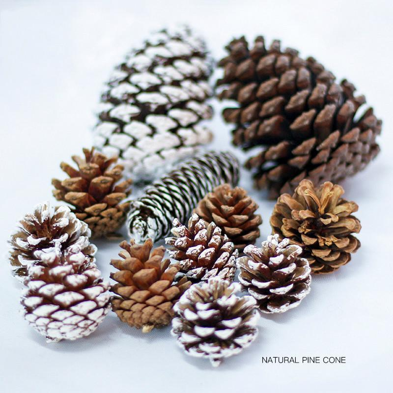 Christmas Tree Natural Pine Cone Ornaments Party Decoration Snowflake Pine Cones Vase Filler DIY Christmas Wreath Materials