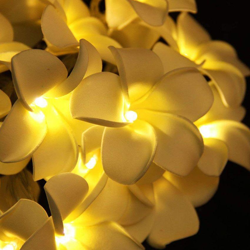 Criativo DIY frangipani LED Luzes Cordas floral feriado iluminação do partido do evento do casamento do Natal Quarto decoração guirlanda