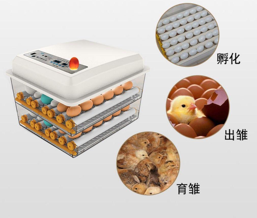 Più nuovo Azienda agricola Incubatore Incubatore Brooder Macchina 16pcs Hotchers Egg A buon mercato Prezzo economico uova di pollo Uova uova incubatore Bird Quail Brooder