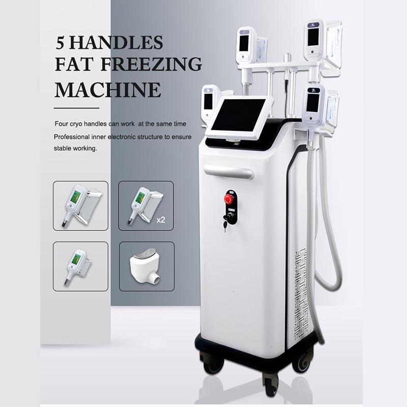 Cryolipolysis makinesi 5 kriyo kolları Cryolipolysis donduru yağ zayıflama makinesi 5 kriyo donma kolları birlikte çalışabilir