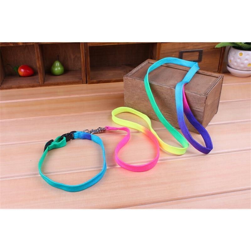 Gato + arco iris para colorido perro cachorro collar leash 110 cm con mascotas de campana Products