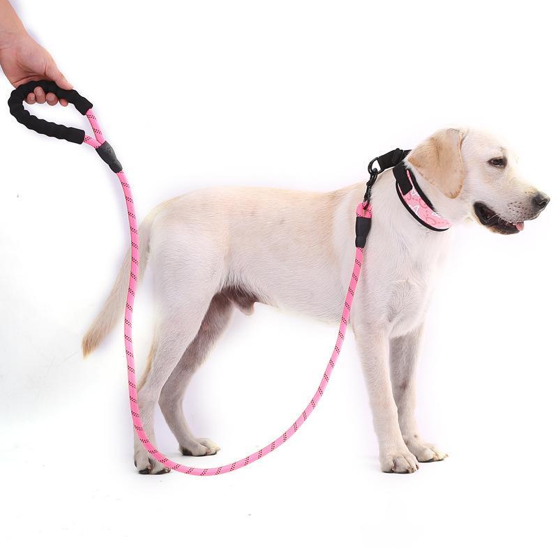 Fournitures pour animaux de compagnie Laisse de chien de chien de chien multicolore Poignée confortable pour chiens de taille moyenne