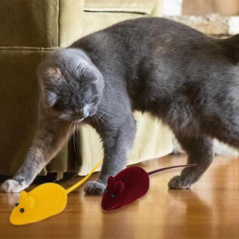 Pet Cat Toy Set Cat Snack Sticks Falso Rato Formato Forma Forma Travesseiro Interativo Brinquedos Brinquedos Simulação Fish Pet Pet Supplies
