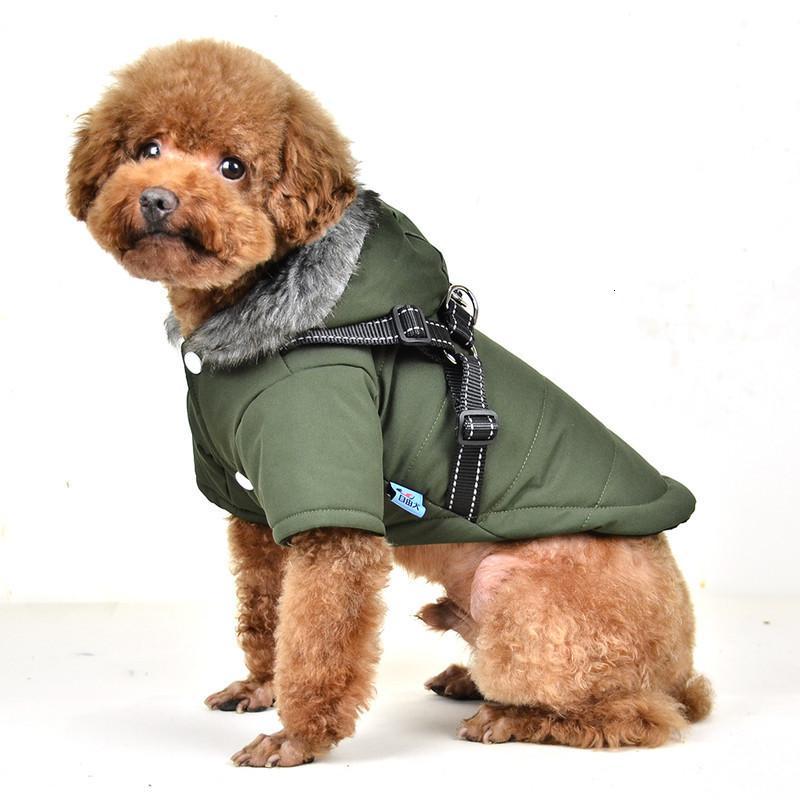 Perro GRATIS New Plain Color Cap Tapa de Seda Reflectante Seda Diseño Algodón Acolchado Pascua Ropa de perro Ropa de perro Capa de perro