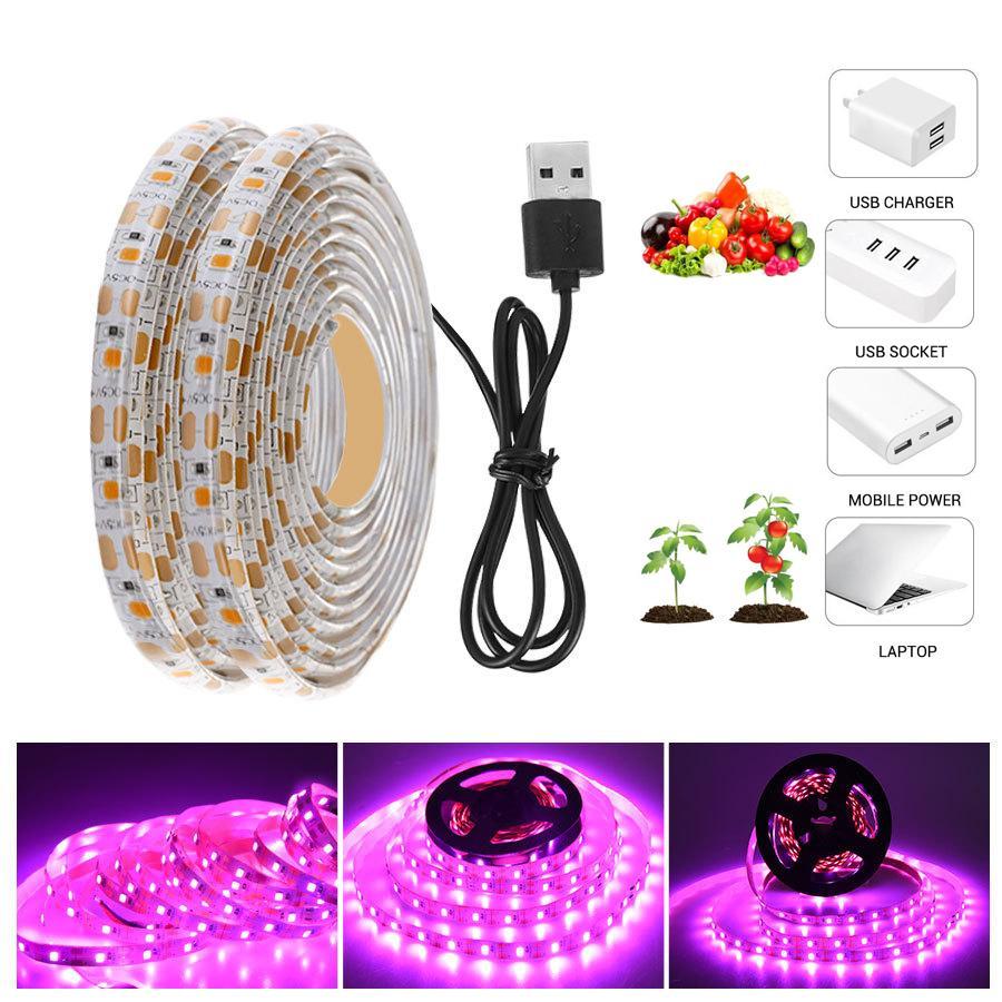 LED Grow Grow Light Spectrum complet 5V USB Cultiver la bande de lumière 2835 LED PHYTO Lampes pour plantes HYDROPHOUSES HYDROPONIC HYDROPONIC 5M