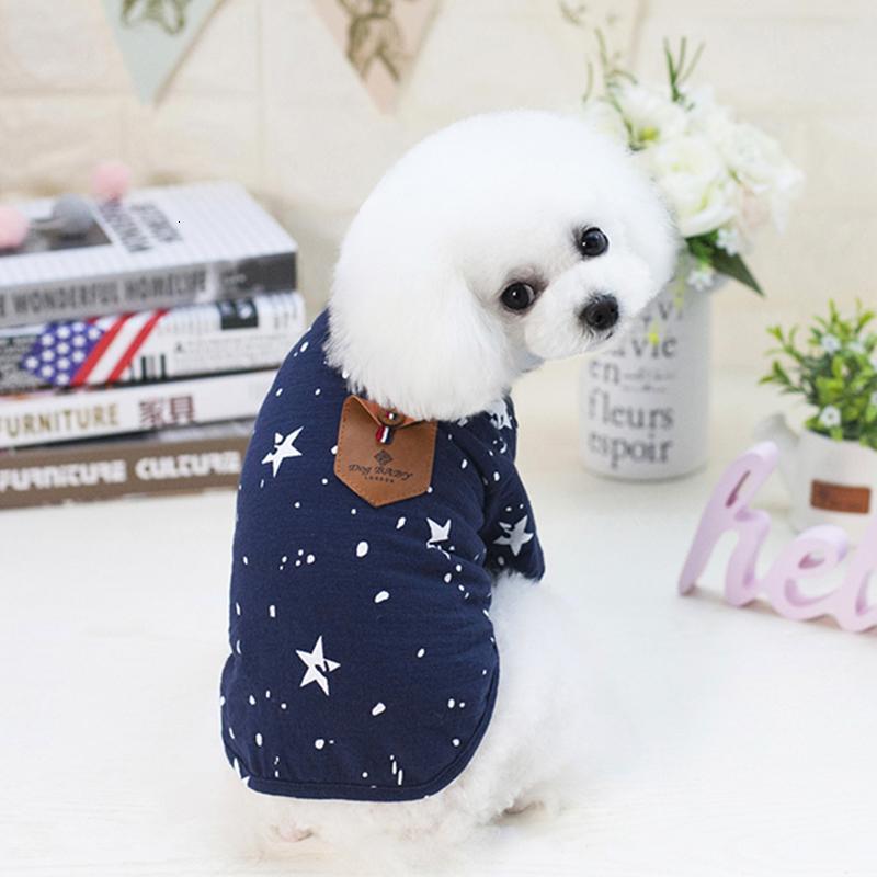 Yelek T-shirt Japon Kore İngiliz Klasik Beş Sivri Yıldız Köpek İki Bacaklı Giysi Pet Giyim