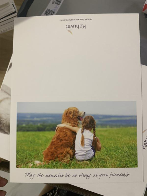 Custom sympathy cards printing service half folded size 11x17cm with blank paper envelope in packs of 10 pcs for dog & cat
