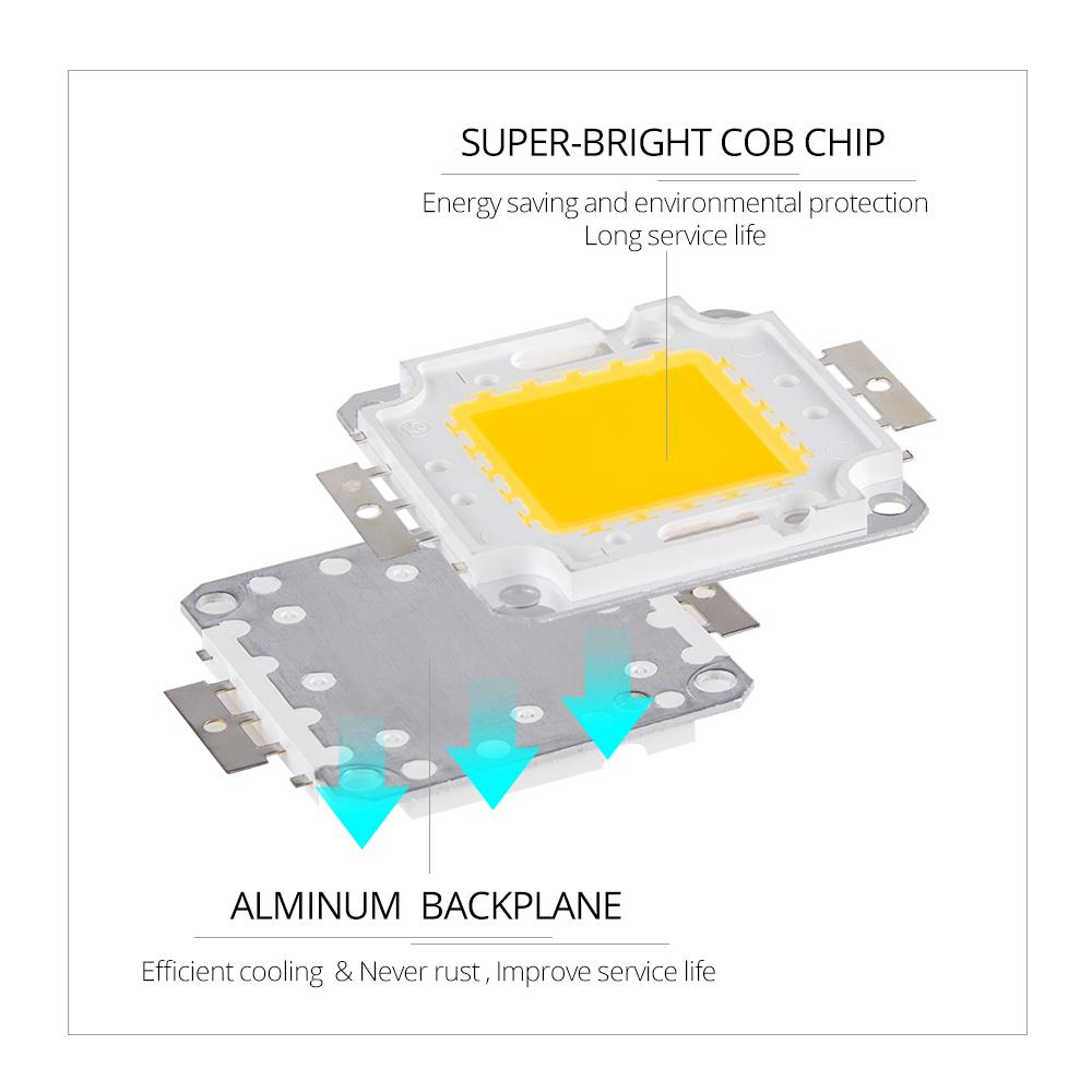 Chips de Espiga de LED 10W 20W 30W 50W 100W Lâmpada Lâmpada DC 12V 36V DIY DIY Luzes do projector Luzes White / White White Lighting