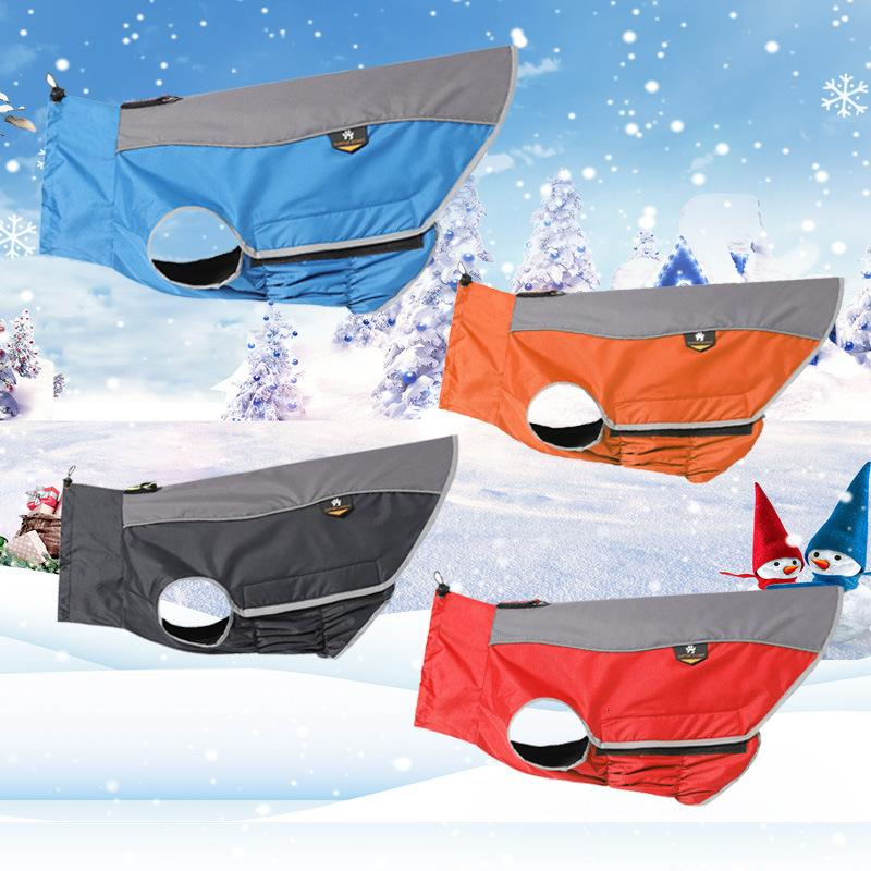 Esportes New Pet Inverno Roupas Ao Ar Livre Outono e Stormsuit Frio Proof Terno Água Raincoat Ski Terno