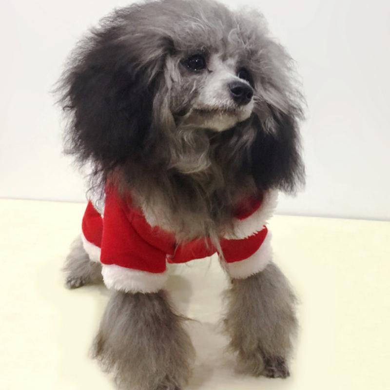 Pequeño cachorro con capucha abrigo perro vestido traje traje chihuahua traje de invierno para perros domésticos Decoración de perros
