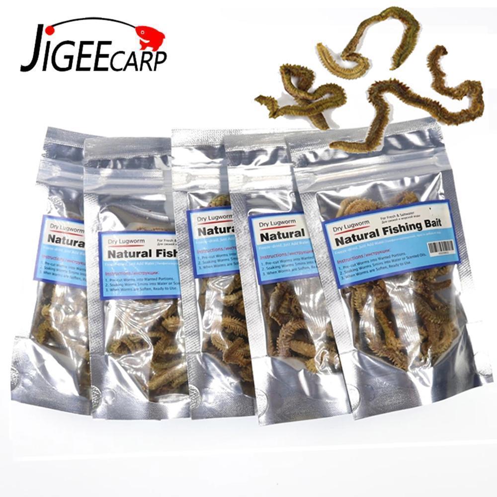 Jigeecarp 5 Bags Sand Worm Bait Dried Lugworm Natural Carp Fishing Lure Bream Flathead Cod Bass Catfish Salt Water Sandworm 201106