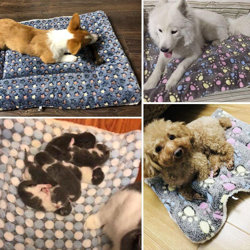 Mascota perro gato engrosamiento de franela invierno y otoño alfombra para dormir almohadilla de doble cara colapas de pie de dormir alfombras de la capa antideslizante