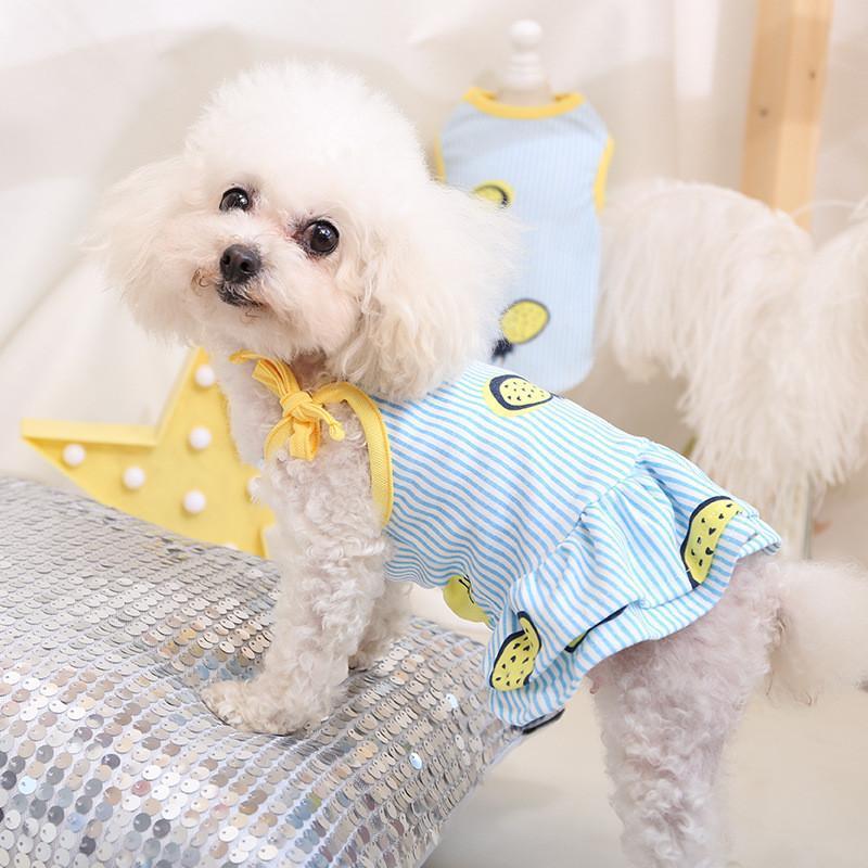 Jupe à rayures rayées d'été d'été pour petits chiens moyens mignons fruits imprimés robe sans manches respirantes robes de princesse de princesse pour chien