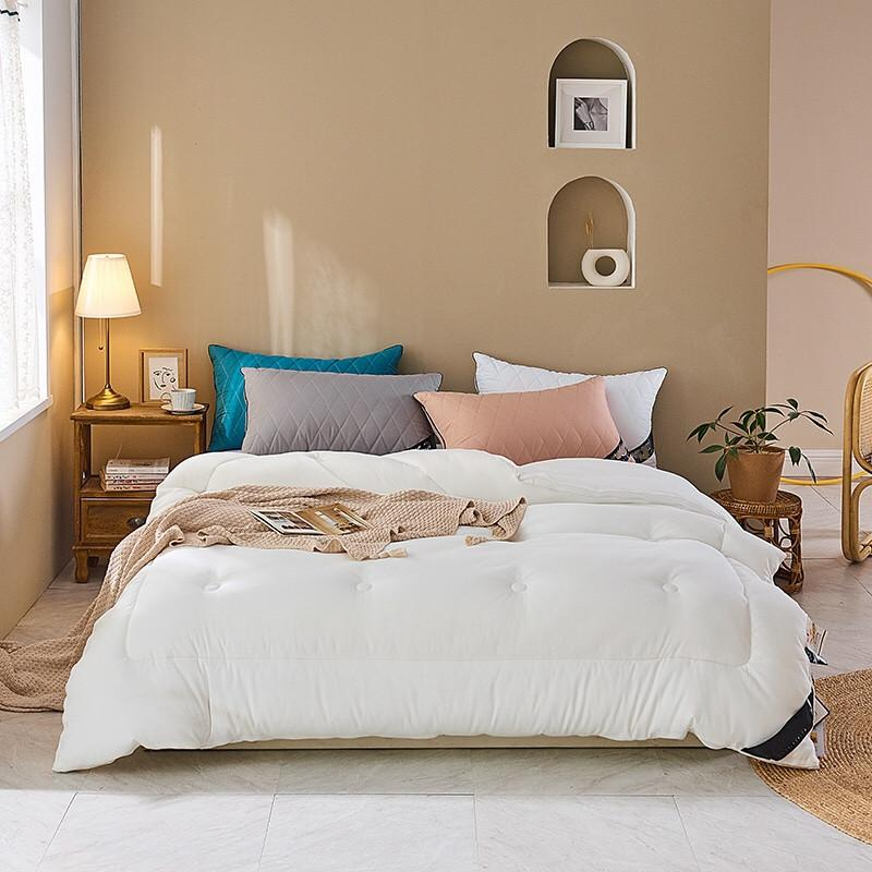 Inverno consolatore cuscino 3pcs Set Queen King trapuntato caldo fitto velluto tessuto adulto colore bianco trapunta cuscino per le donne uomini 101