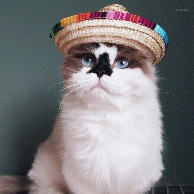 New Multicolor Pet Paglia Cappello Cat Cane Cat Mexican Page Sombrero Cappello Pet Regolabile Birghette Costume Dropship1