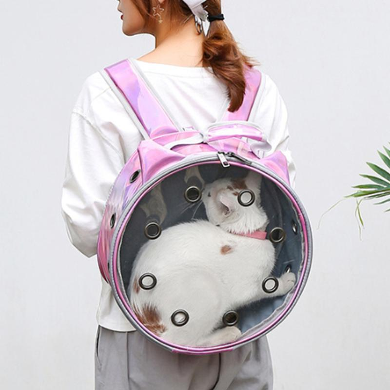 Portable Pet Cat Carrier Bag Trasparente Traspibile Travel Travel Cat Dog Backpack Kitten Carry gabbie Forniture per animali domestici