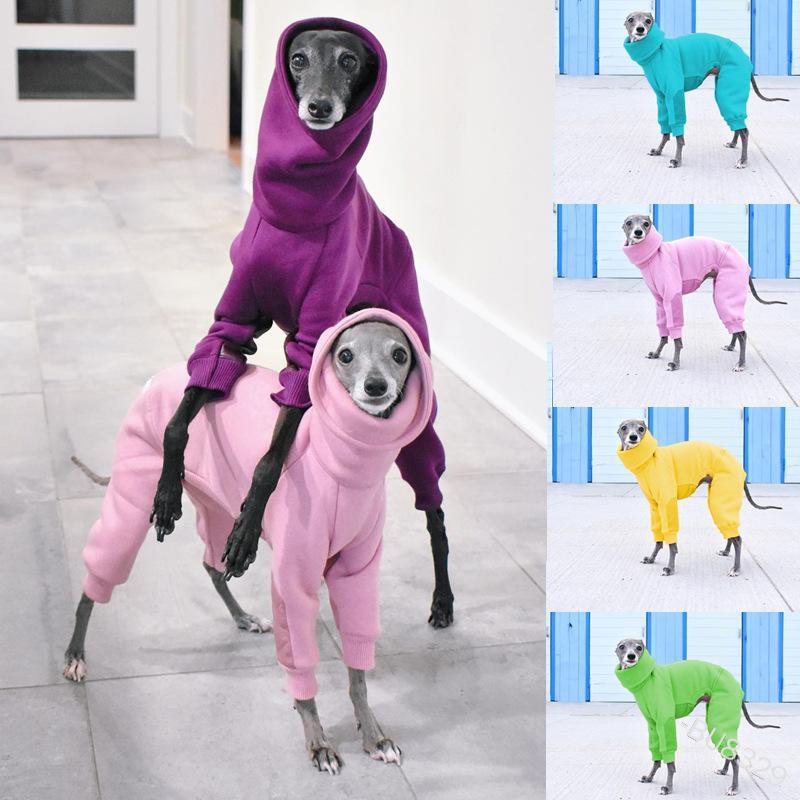 بلون لون الكلب الملابس عالية طوق الخريف الشتاء الدافئة الحيوانات الأليفة البلوز هوديس روبا بارا بيرو اكسسوارات الأزياء 27lm g2