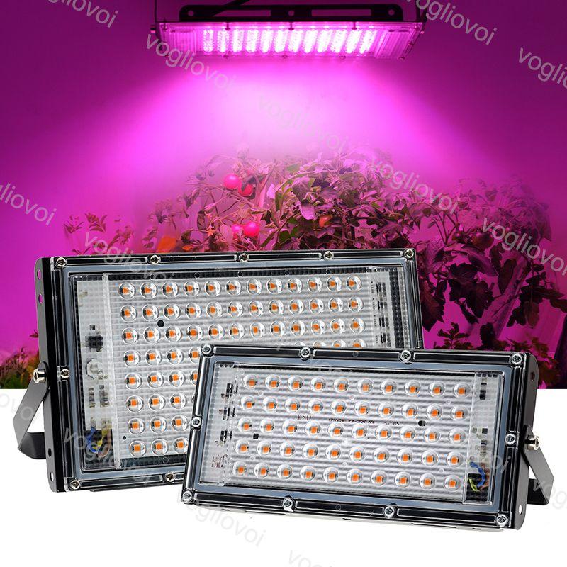 LED 성장 조명 전체 스펙트럼 투광 조명 50W 100W PC + 알루미늄 방수 IP65 묘목 재배 재배 보충 빛 eub