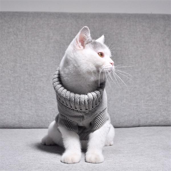 Sıcak Pet Kedi Giyim Kış Sonbahar Kediler Örme Kazak Jumper Yavru Ceket Giysi Gömlek Roupa Para Gatos Kitten Giysileri OO50WY Y1127