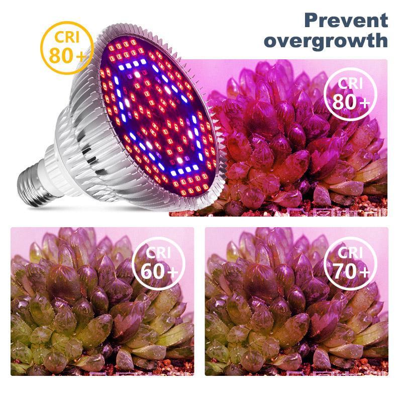 LED Kapalı Topraksız Çiçekler Bitkiler LED Büyüme Lambası Hızlı teslimat için Işık Full Spectrum 30W / 50W / 80W E27 LED Büyüyen Ampul büyütün