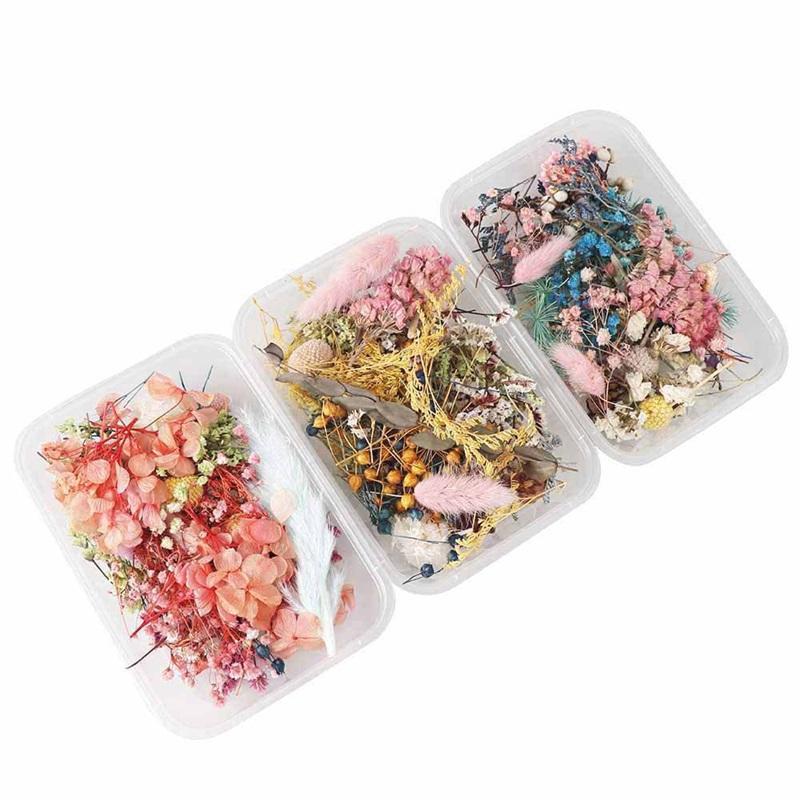 1 Box Flower Seco Plantas Secas para Aromaterapia Vela Epoxi Resina Pingente Colar de Jóias Fazendo Artesanato DIY Acessórios 149 N2