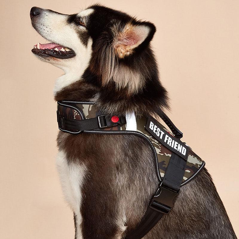 Hiçbir Çekme Köpek Koşum, Servis Köpek Yelek, Eğitim Köpek Ves Ayarlanabilir Yansıtıcı