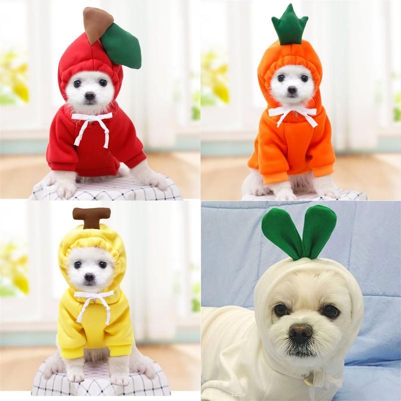 Haustiere mit Kapuze Obstmantel Weiße Rettich Frosch Form Plüsch Lace Up Kleidung Netter Hund Katze Pullover Welpen Winter Komfortable 9 9gg G2