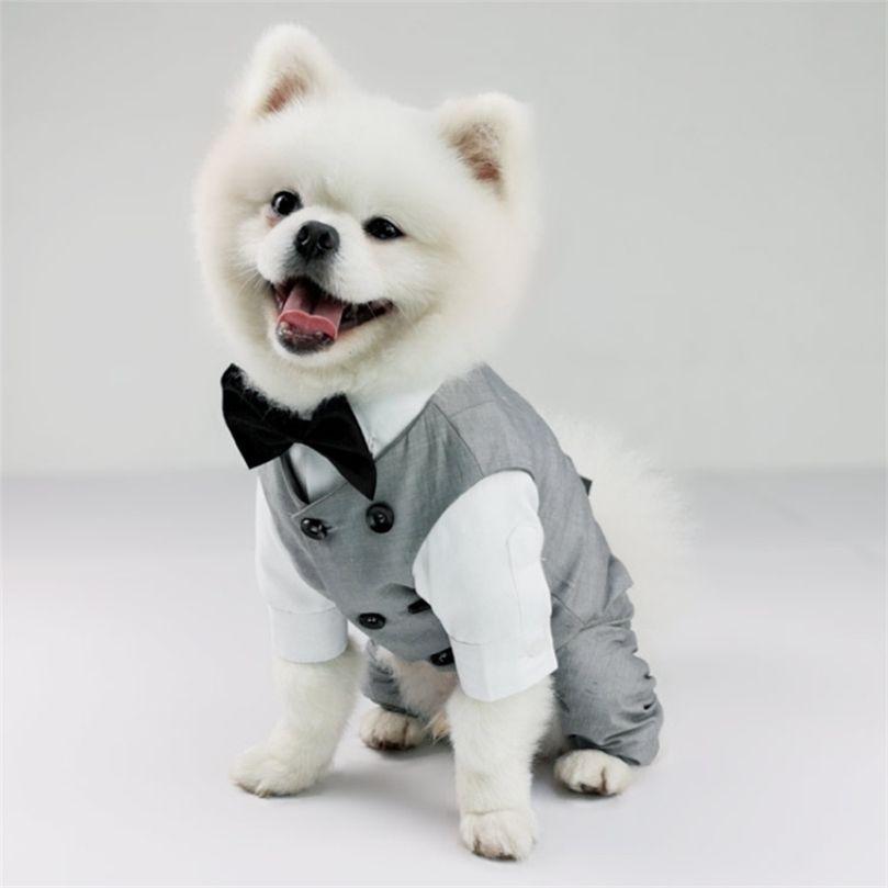 Erkek Suit Düğün Kostüm Chihuahua Yorkie Pomeranian Schnauzer Pug Fransız Bulldog Corgi Köpek Giysileri Pet Giyim Dropship 201223