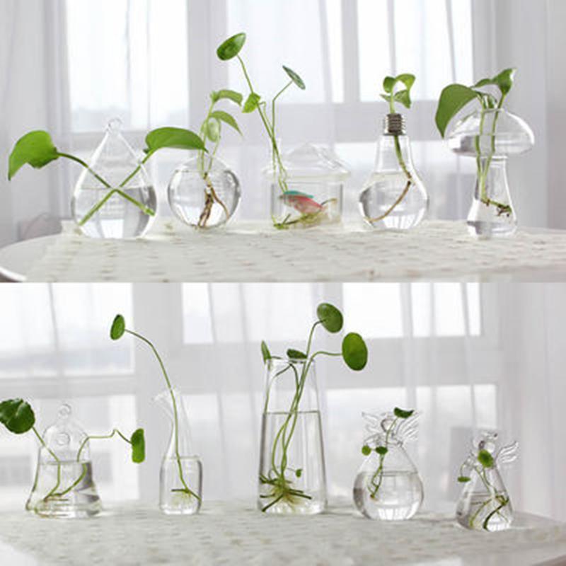 Creative Hand Made Glass Vase Transparent Hydroponic Flower Bottle Indoor Gardening Living Room Home Desktop Art Decoration