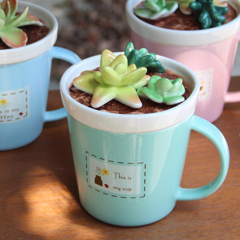 Creativo Zakka succulente su copertina latte tazza tazza di acqua tazza di doni vita