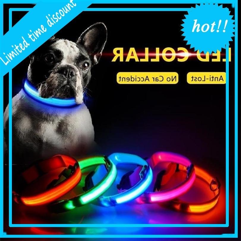 HOt!LED Nylon Night LED Light up Glow in the Dark Small Pet Leash Dog Flashing Safety Collar
