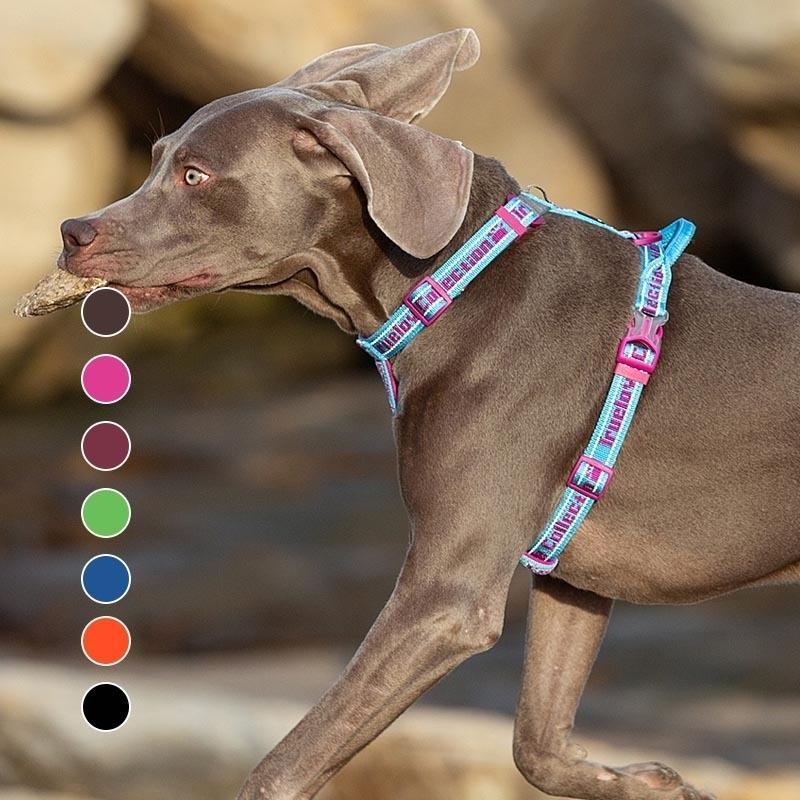 TRUELOVE SOFT Double Harnais pour chiens rembourrés Easy On et Off Nylon Réglable Car Ceinture de harnais pour animaux de compagnie réfléchissant pour l'entraînement en plein air marche 201126