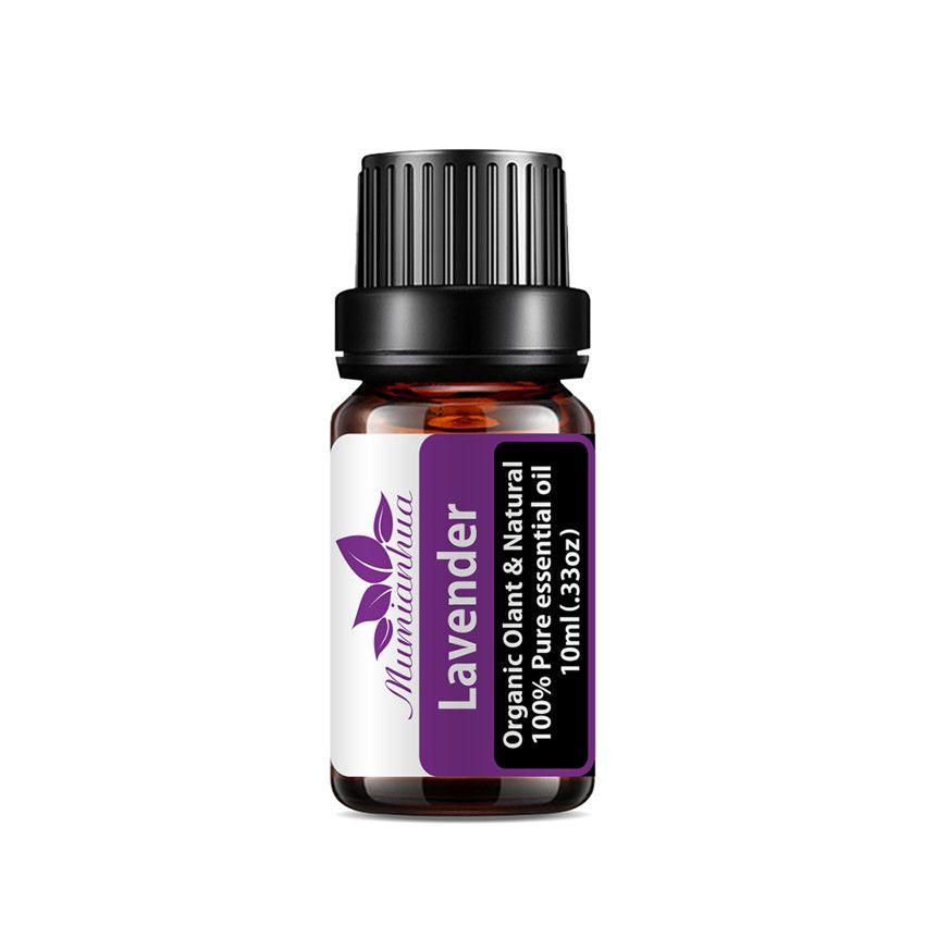 Naturpflanze Zitrone Rose Lavendel Reine ätherische Ölbehandlung Aromatische Entspannungstherapie Better Hautpflegemassage