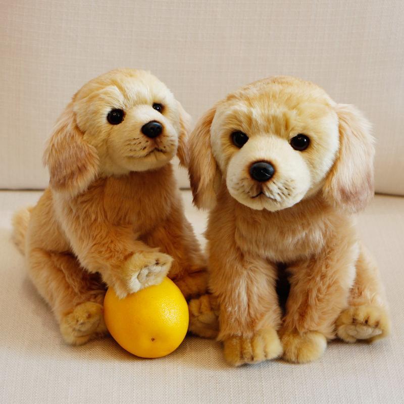 Simulazione coreana Labrador Golden Retriever Doll Pet Dog Simulazione Peluche Decorazione giocattolo Accessori per la casa Regalo di compleanno per bambini Q0113