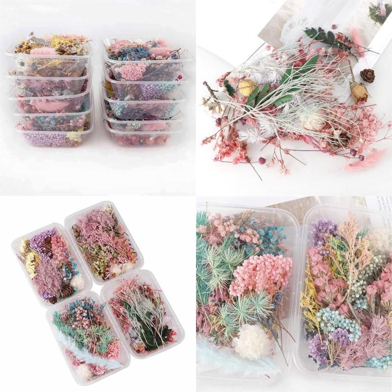 1 scatola Real Flower Secco Piante secche per candela di aromaterapia Resina epossidica Pendente in resina gioielli per creazione di artigianato accessori fai da te 1309 T2