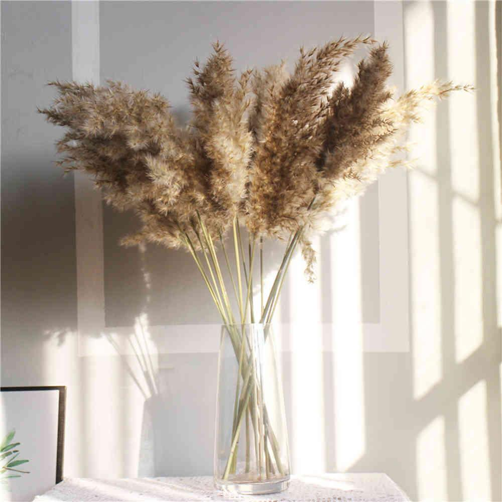 Light color flowers bunch natural dried pampas grass flower beautiful reed christmas home wedding decoration phragmites