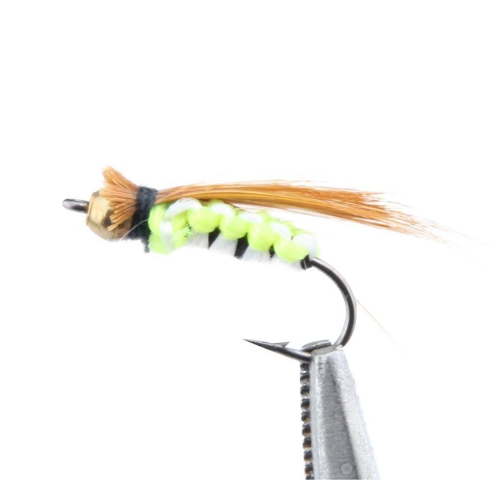 80pcs Set secco a mosca a mosca in scatola con scatola trota artificiale carpa bass farfalla insetto insetto esche freschwater salewat jlldym sport77777