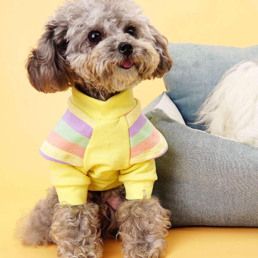 2021and Зима 2020 Новый веселый пирог Радужный летающий рукав нижнее покрытие домашнее животное маленькая собака ткань осень Тедди