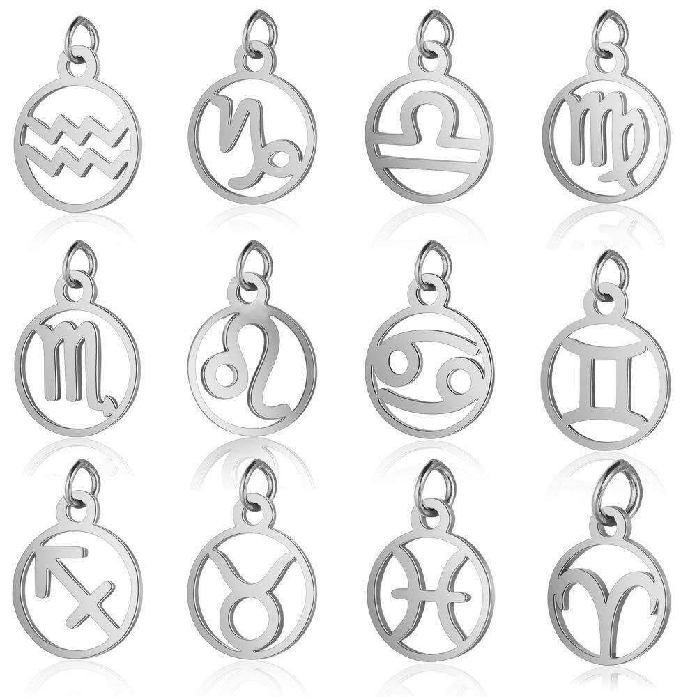 11mm Stainless Steel 12 Zodiac Sign Charms DIY Constellation For Women Jewelry Making Mini Charms 10pcs /lot