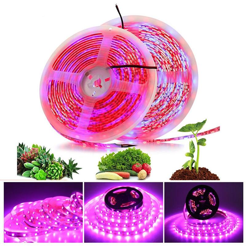 Full Spectrum LED Grow Lights 5m/Roll 300leds 5050SMD Chips Strips IP65 Waterproof for Indoor Greenhouse Hydroponic Plant Growth EUB