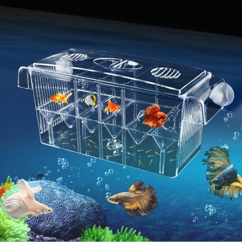 4 Odalar Yüksek Temizle Balık Islah Kutusu Akrilik Akvaryum Damızlık Kutusu Çift Guppies Kuluçka Kuluçka Izole