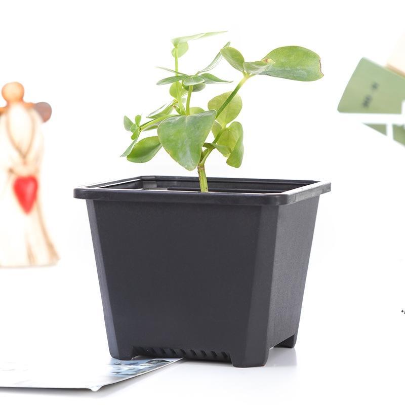الحضانة مربعة بلاستيكية زهرة وعاء الغراس 3 الحجم للديكور داخلي مكتب السرير أو الكلمة، والساحة في الهواء الطلق، الحديقة أو الحديقة زراعة Seaway DWF5444