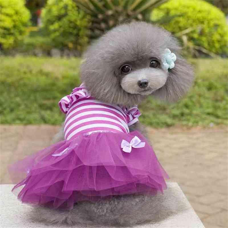 Sublimación Reflector en blanco Nylon Chaleco para perros mascotas Ropa de malla transpirable ajustable Camisa de moda creativa Camisa de verano TUXEDO Suministros para perros de mascotas 18 productos