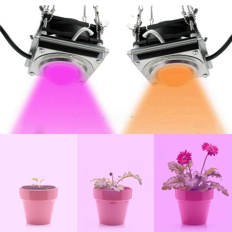 LED 성장 빛 2000W 실내 식물 개 암 나무 열매 전체 스펙트럼 식물 조명 성장 램프 텐트 상자 램프 가정 심기 꽃