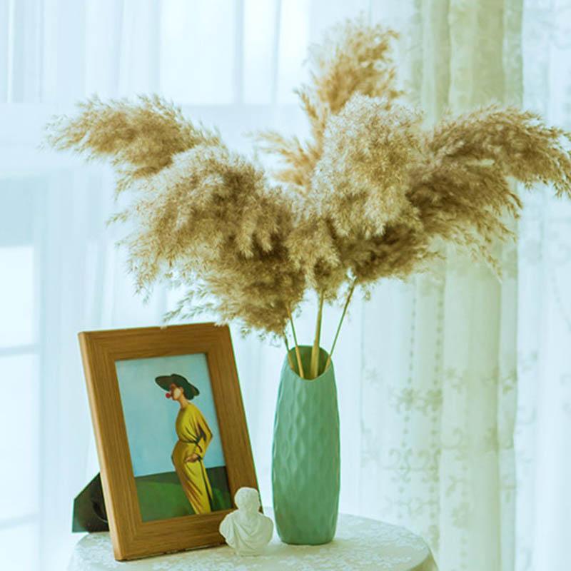 Vero fiori secchi Pampas erba grande decorazione piante naturali fiori di nozze bouquet con vaso di plastica per arredamento domestico di buona qualità