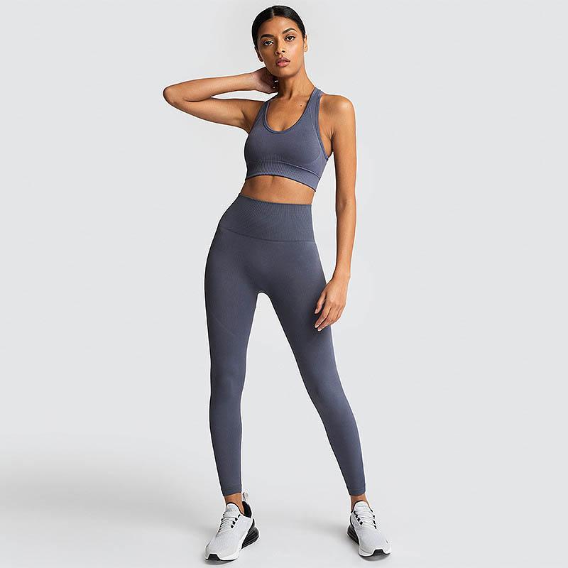 Mulheres Esportes Ioga Define Cintura Alta Sólida Running Ternos Senhoras Elásticas Sem Costura Fitness Wear Designer Top Quality Sportswear 05