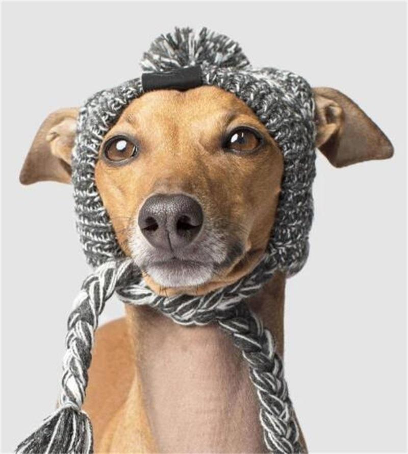 가을 겨울 강아지 의류 모피 공은 따뜻하고 바람 방풍 퍼프 공 뜨개질 방법 모자 pet pethe headgear 107 v2