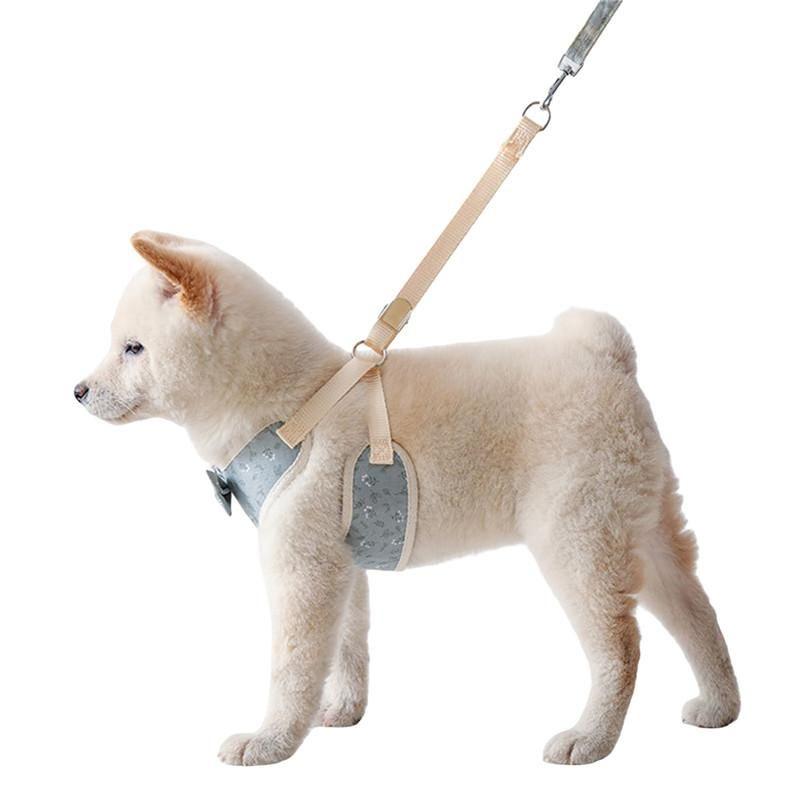 2021 Cão Ajustável colete de arnês andando trela de chumbo para cachorrinho cães colarinho de poliéster harness para pequeno cão médio gato animal de estimação